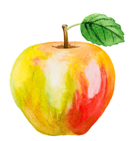 apple leaf: yellow and red watercolor apple with leaf on white Stock Photo