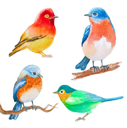 set of watercolor birds isolated on white
