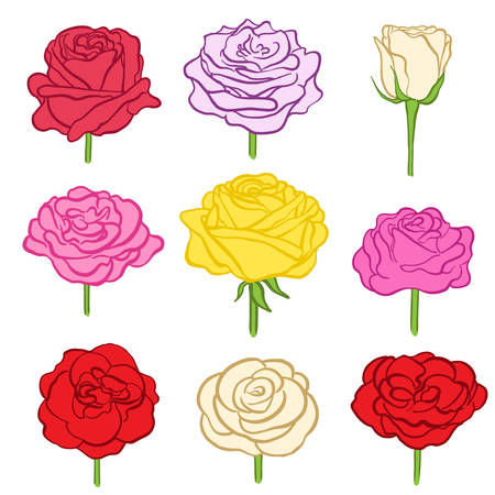 Set of hand drawn roses on white. various color flowers as design elements.