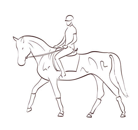 riding a horse vector illustration in line art style. equestrian theme drawing Иллюстрация