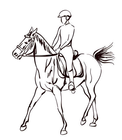 riding horse vector illustration. sketchy drawing on equestrian theme Иллюстрация