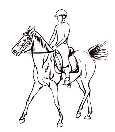 rijpaard vector illustratie. schetsmatig tekenen op paardensport thema