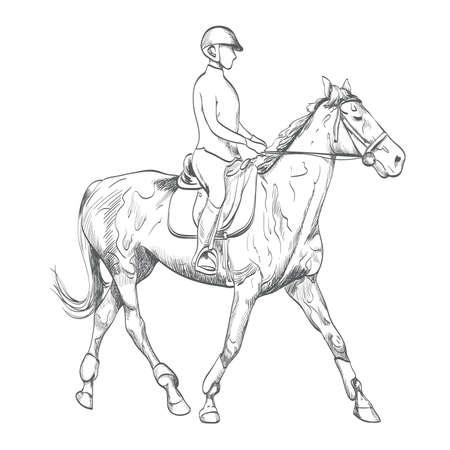 Hand drawn horse riding. 向量圖像