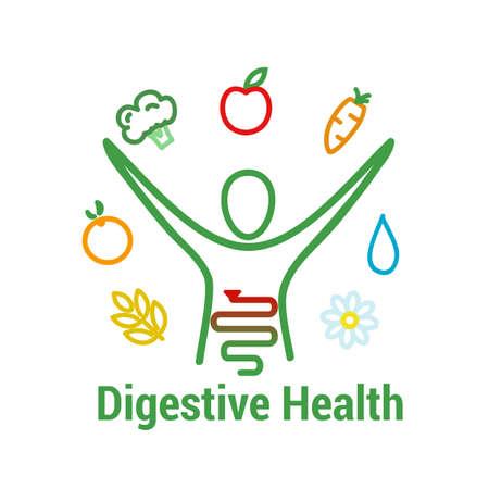 소화기 건강 개념입니다. 장 건강과 인간의 그림, 과일, 야채, 물 및 섬유 식품 기호로 기호 되 고 잘. 벡터 일러스트 레이 션 일러스트