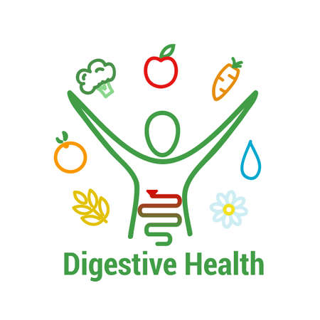 Digestive health concept. Intestinal health and well being symbol with human figure, fruits, vegetables, water and fibers food symbols. vector illustration