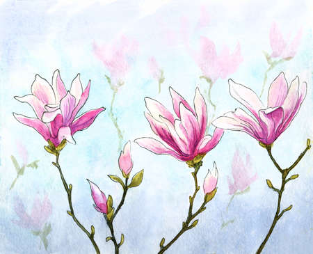 watercolor and ink magnolia twigs with flowers and buds natural background Zdjęcie Seryjne