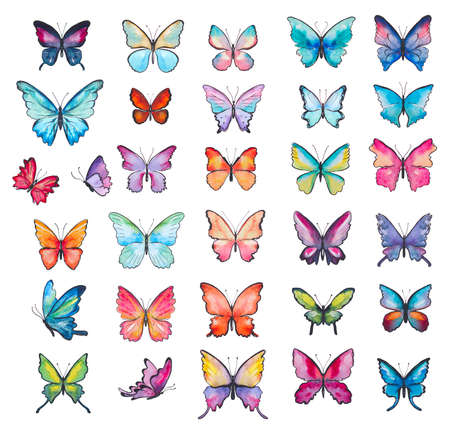set of watercolor butterflies isolated on white Zdjęcie Seryjne