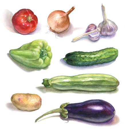 set of watercolor vegetables on white
