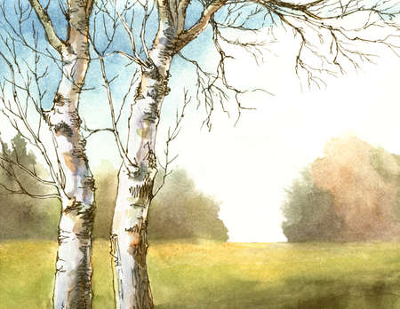 watercolor and ink autumn landscape with birch trees. hand-drawn illustration