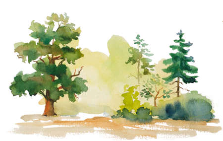 watercolor illustration of trees on white background