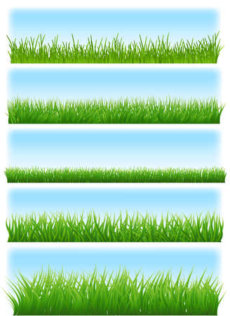 green grass and sky set on white background. vector illustration