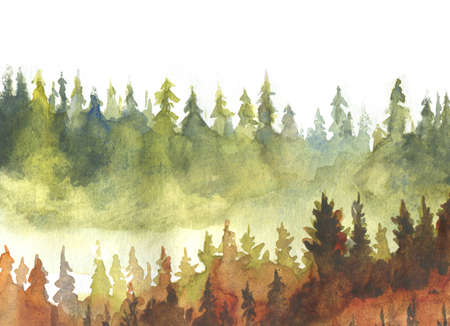 spruce trees autumn background watercolor painting