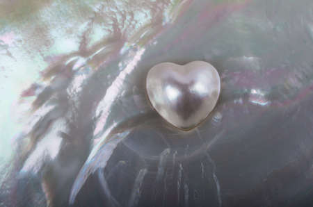 deep south: heart-shaped pearl in a oyster