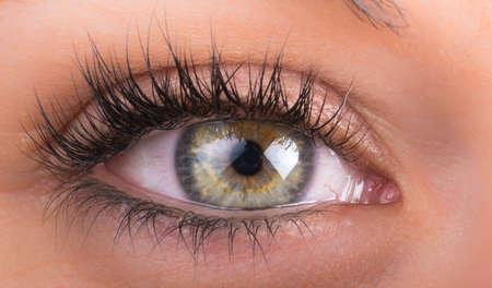 detail of eyes of the girl with long eyelashes photo