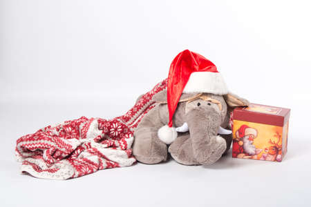 elephant plush and Christmas gifts
