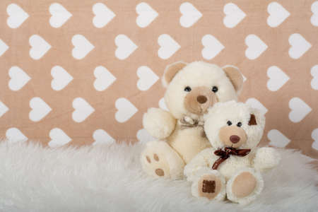 teddy bear on a beige background 写真素材