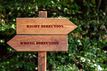 wooden sign indicating right or wrong direction