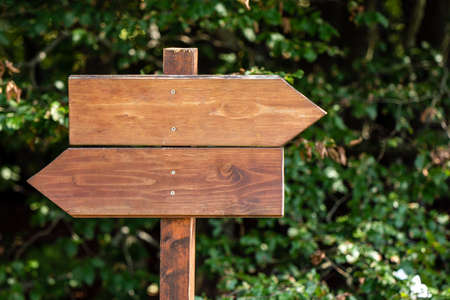 empty wooden sign indicating the direction