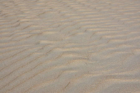 Fine sand with imprints and drawings of the wind 写真素材