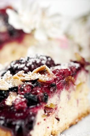 Wild berries cake closeup with blurred background photo