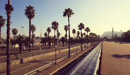 palm lined: Barcelona, Spain, palm tree lined boulevard promenda panorama in summer Editorial