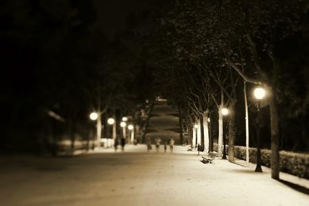bench park: Nocturno con un banco de un parque iluminado y de la pasarela de peatones distantes Editorial