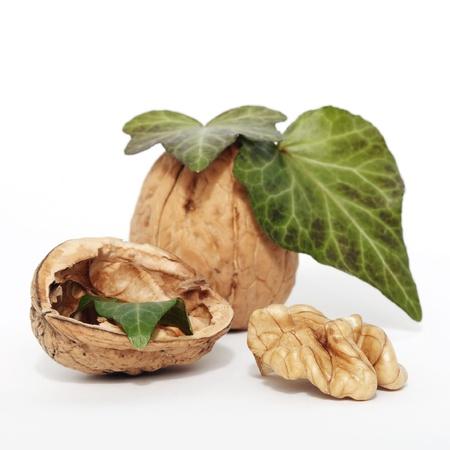 lobed: Fresh walnut closeup studio shot on white Stock Photo