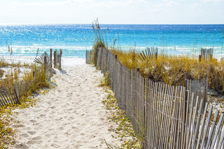 Sandy walkway leading down to the beach on the Gulf Shore in Florida. Blue sky is in the background. 版權商用圖片