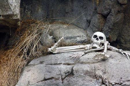 the novelty: Halloween Novelty Skeleton in the Spooky Graveyard
