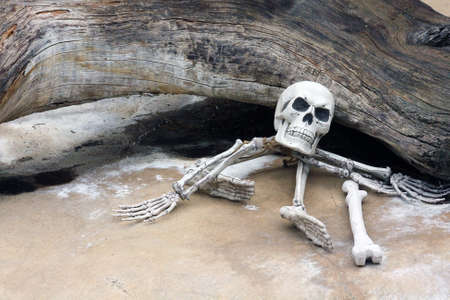 spooky graveyard: Halloween Novelty Skeleton in the Spooky Graveyard