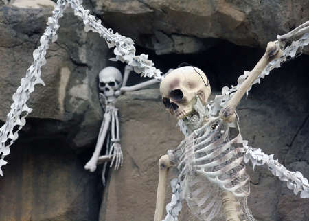 the novelty: Novelty Skeletons Decorate an elaborate Halloween Display
