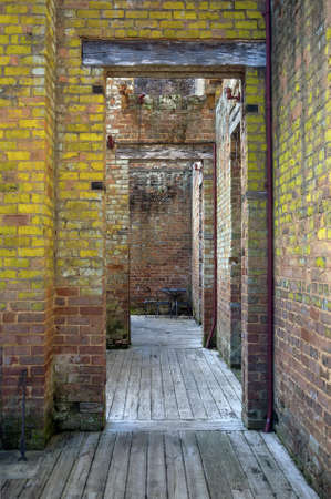 A view from inside the remains of an antebellum mansion