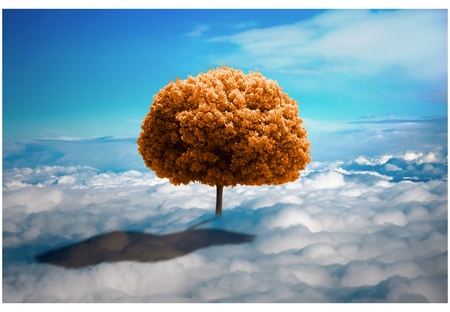photo manipulation: Trees in the clouds. Lonely tree growing on the meadow from the clouds. ecological concept. photo manipulation.