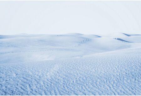 drifts: Arctic desert. winter landscape with snow drifts.