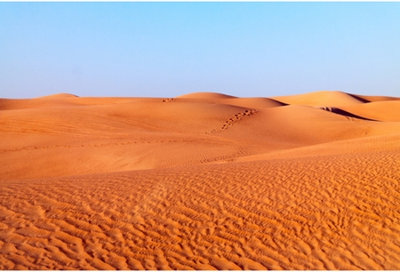 Arabian desert dune background on blue sky. Desert near the city of Dubai. dune with traces of past tracks of camels and Bedouin