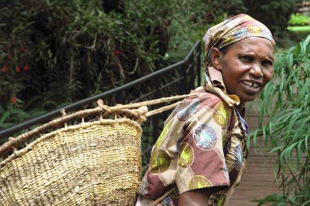 old Tanzanian Woman works in coffee farm in Karatu north of Tanzania Editorial