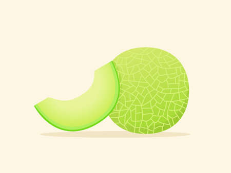 Melon fruit fresh slice juicy vitamin nutrition fiber white isolated background with flat color style