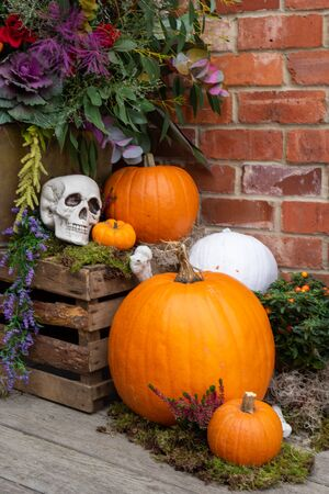 A Halloween display on a porch with pumpkins and skulls