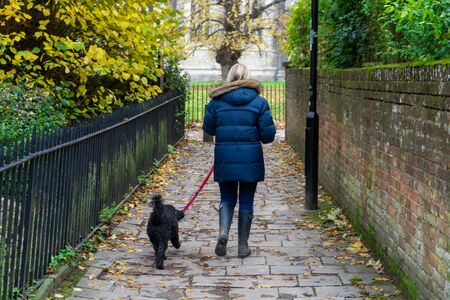 a woman in a winter coat and wellies walking her dog through an alleyway in autumn Imagens