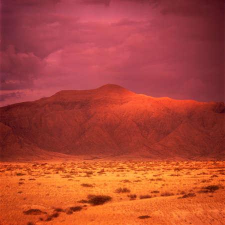 africa sunset: sunset