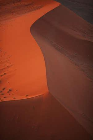 lia: dune