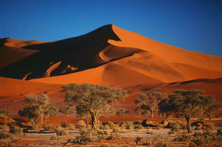 landscape of the Namib desert