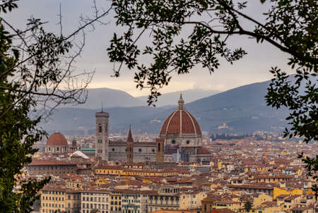 Panoramic view of the city of Florence in a frame of vegetation