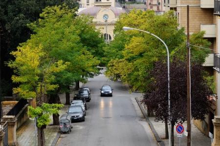 treelined: Tree-lined road from the train station, Caltanissetta  Sicily, Italy Stock Photo