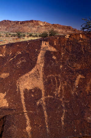 petroglyphs of the archaeological site of twyfelfontein, africa, namibia
