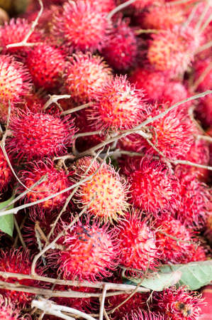 Rambutan fruit in the fruit and vegetable market of Fort de France in Martinique