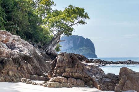 Bambusowa plaża w rezerwacie przyrody na wyspie Ko Mai Phai