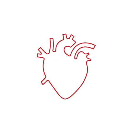 Human heart vector illustration, outline design