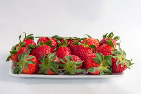 multitude: Photo horizontal composition colors of a multitude of strawberries