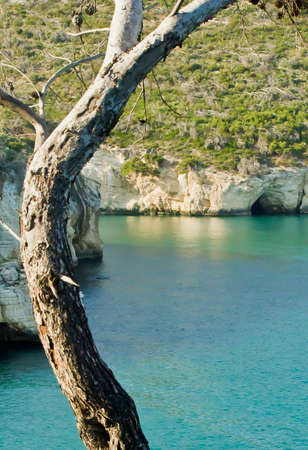 felice: Gargano, sea cliff, Puglia, arc of san felice